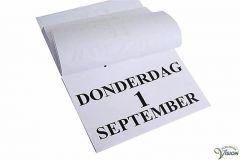 Scheur-dagkalender 2020 grootletterschrift formaat A4.